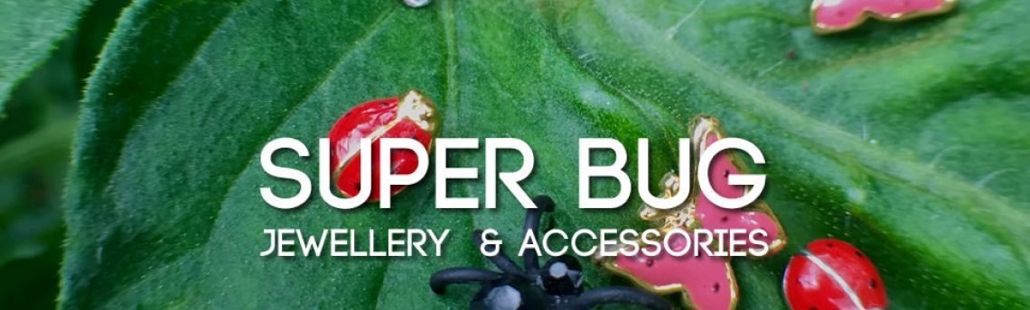 Super bug jewellery – ladybirds, dragonflies, spiders and more